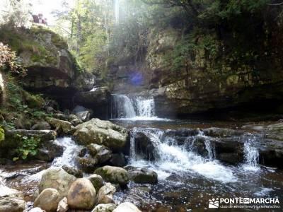 Parque Natural Sierra de Cebollera (Los Cameros) - Acebal Garagüeta;turismo por guadalajara agencia